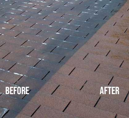 Roof Shingles before and after cleaning services